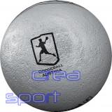 Dodge- / Völkerball Sportastic Silber
