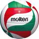 Volleyball Molten VXM1900